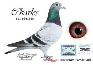 Charles B11-6341638