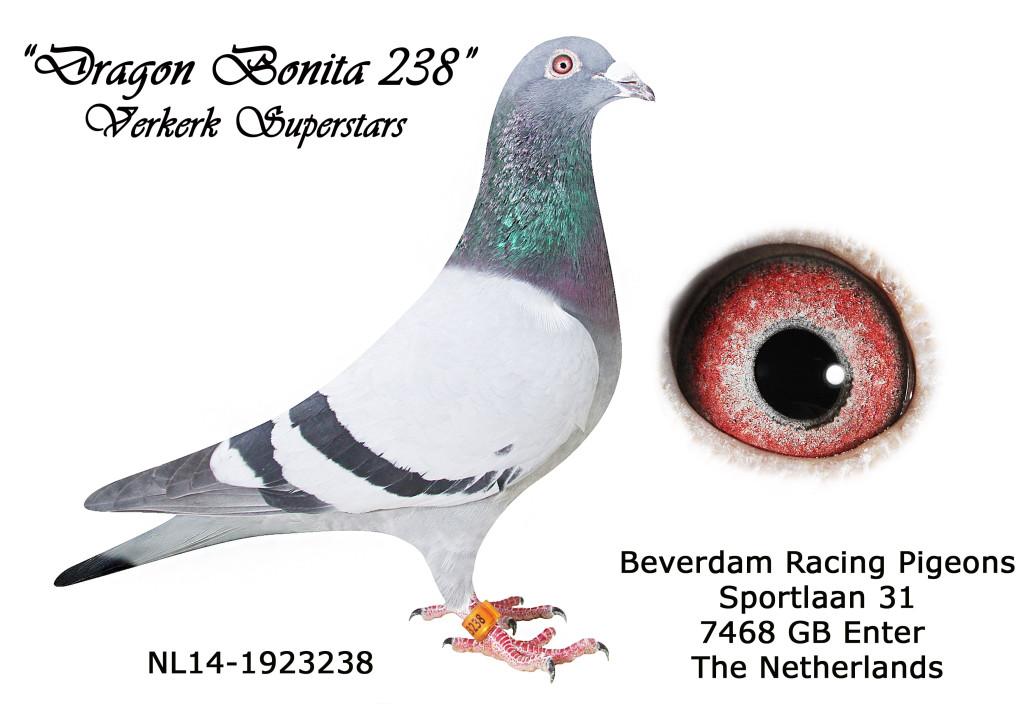 NL14-1923238 L