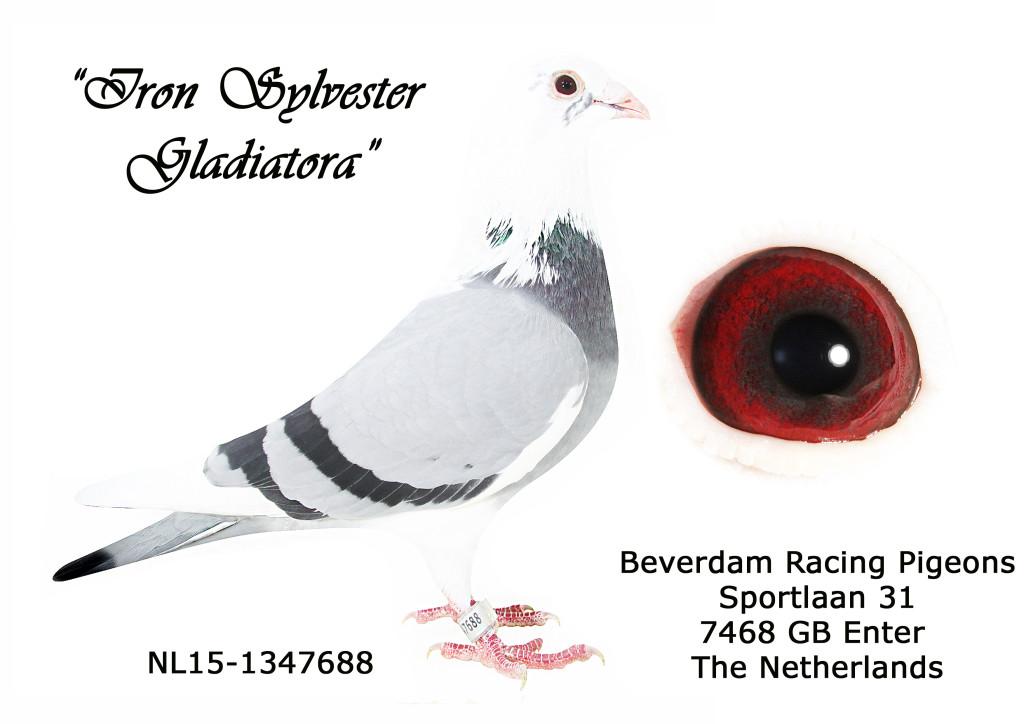 NL15-1347688 L
