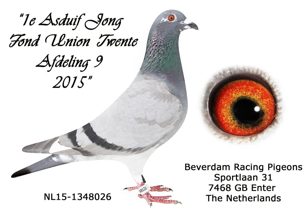 NL15-1348026 1 Fond Union Twente 2015
