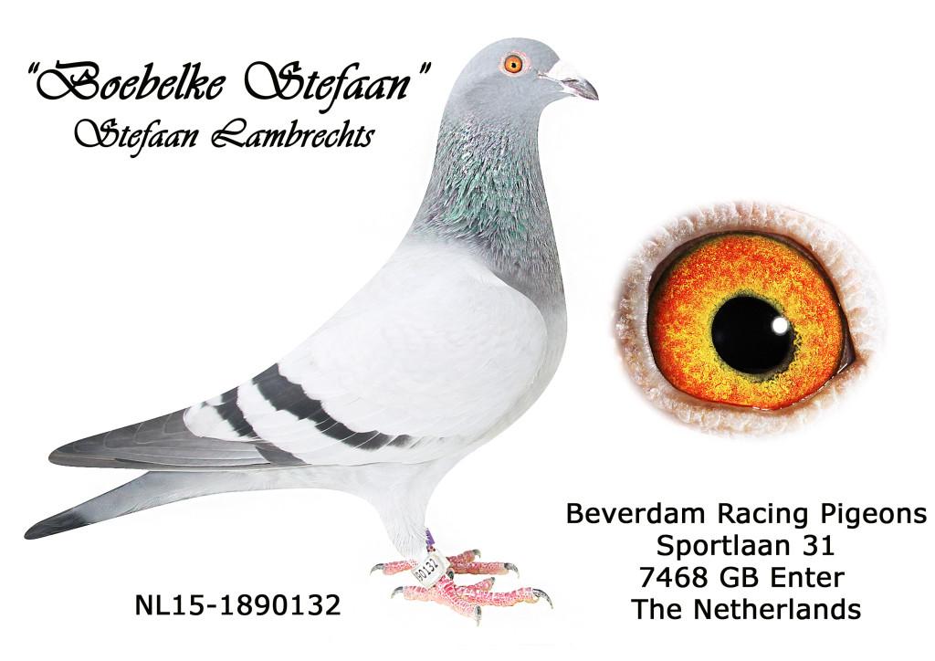 NL15-1890132 L
