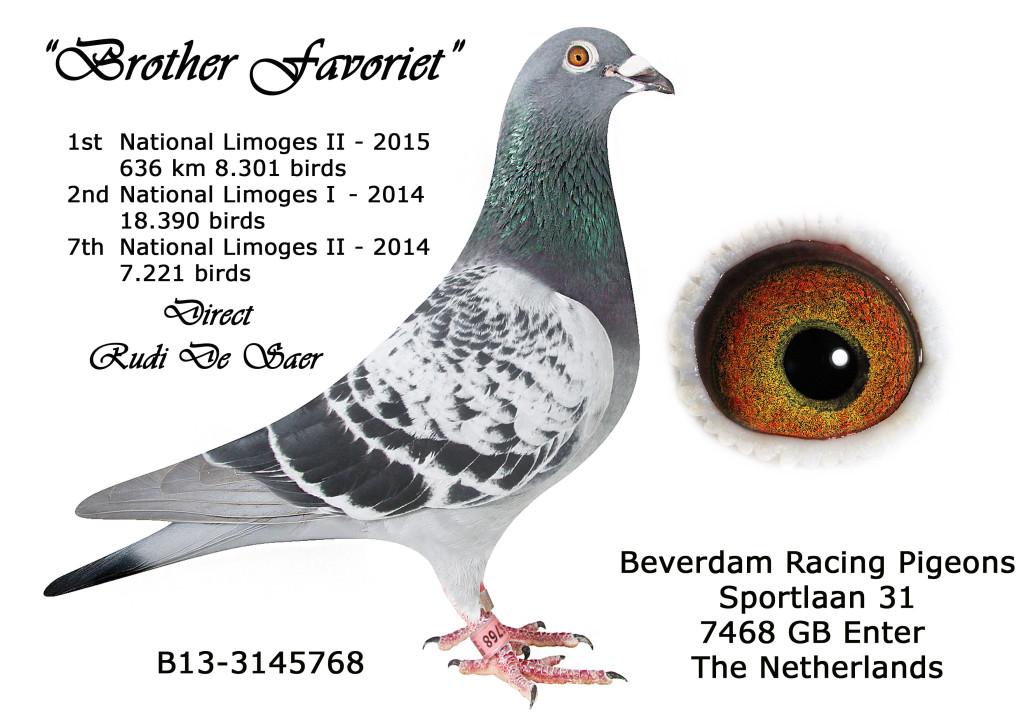 B13-3145768 broer De Saer