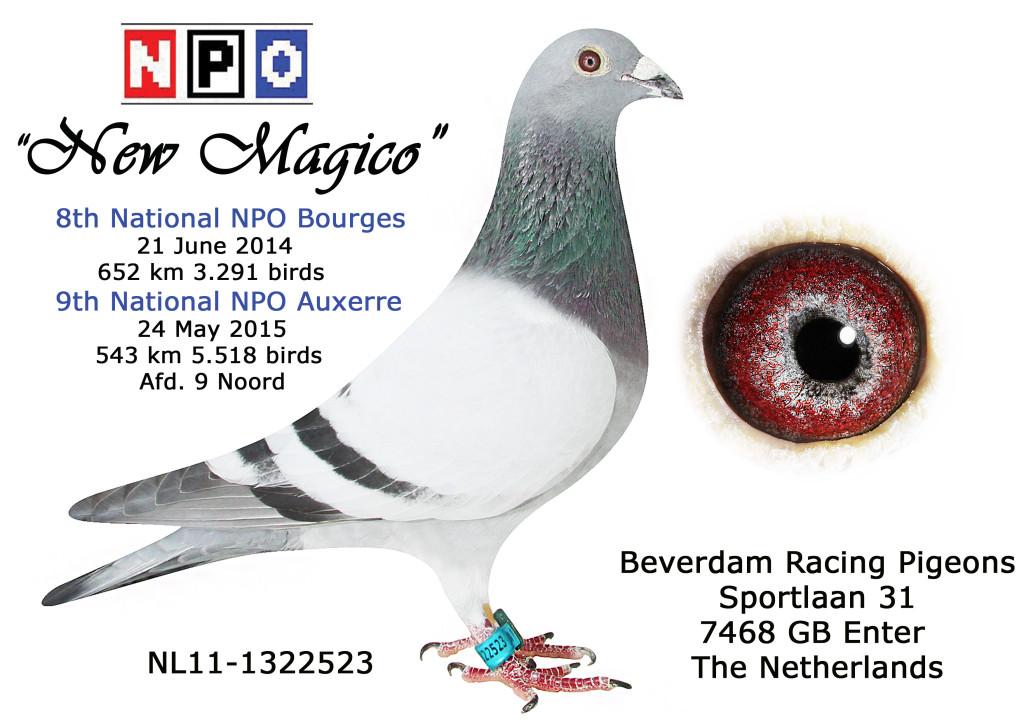 NL11-1322523 new magico