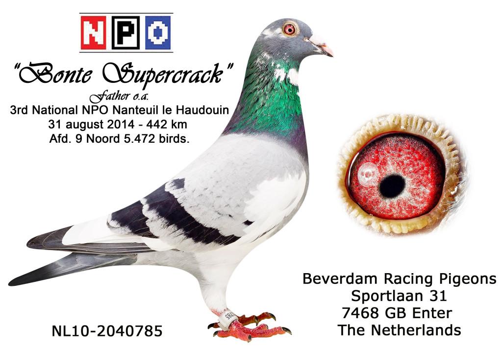 NL10-2040785 Vader 3e NPO Nanteuil le Haudouin