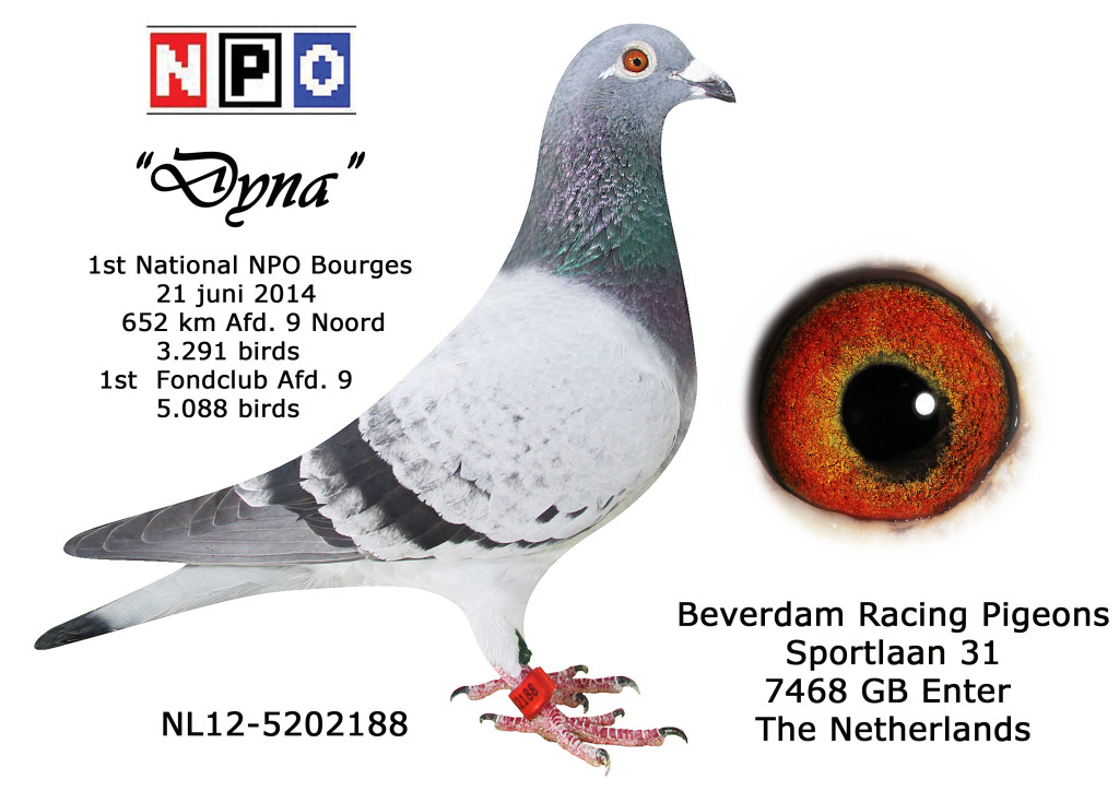 NL12-5202188 1e NPO Bourges 2014